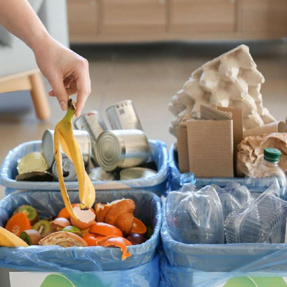 Como separar o lixo corretamente? Confira dicas