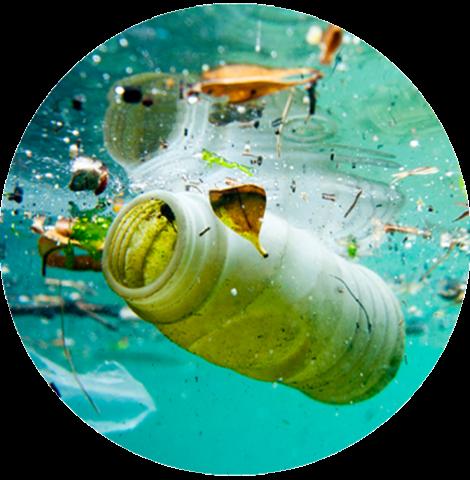 Atitudes que podem contribuir para a preservação dos oceanos