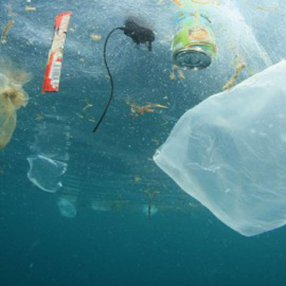 Como salvar os oceanos? Saiba como evitar sua destruição