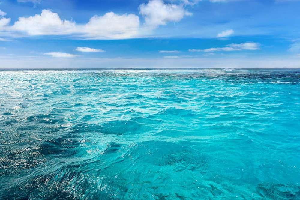 Por que é importante preservar os oceanos?