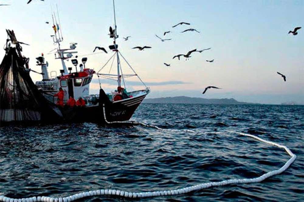 Como a pesca comercial prejudica o meio ambiente