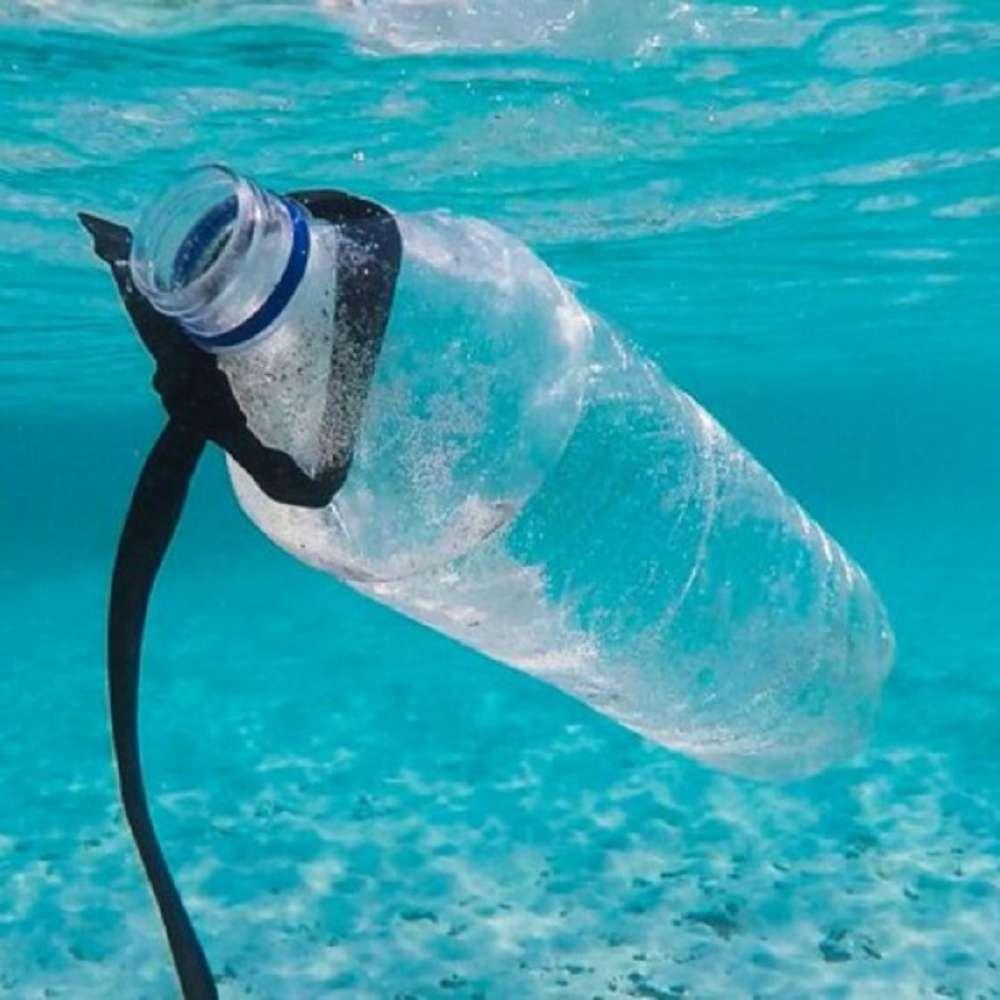 Entenda por que o uso sustentável dos oceanos é importante