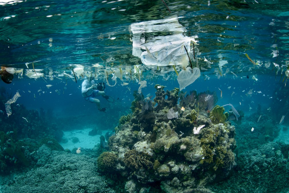 Quanto de lixo plástico se joga nos oceanos?