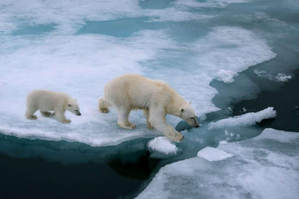 Aquecimento global e os oceanos: entenda a relação