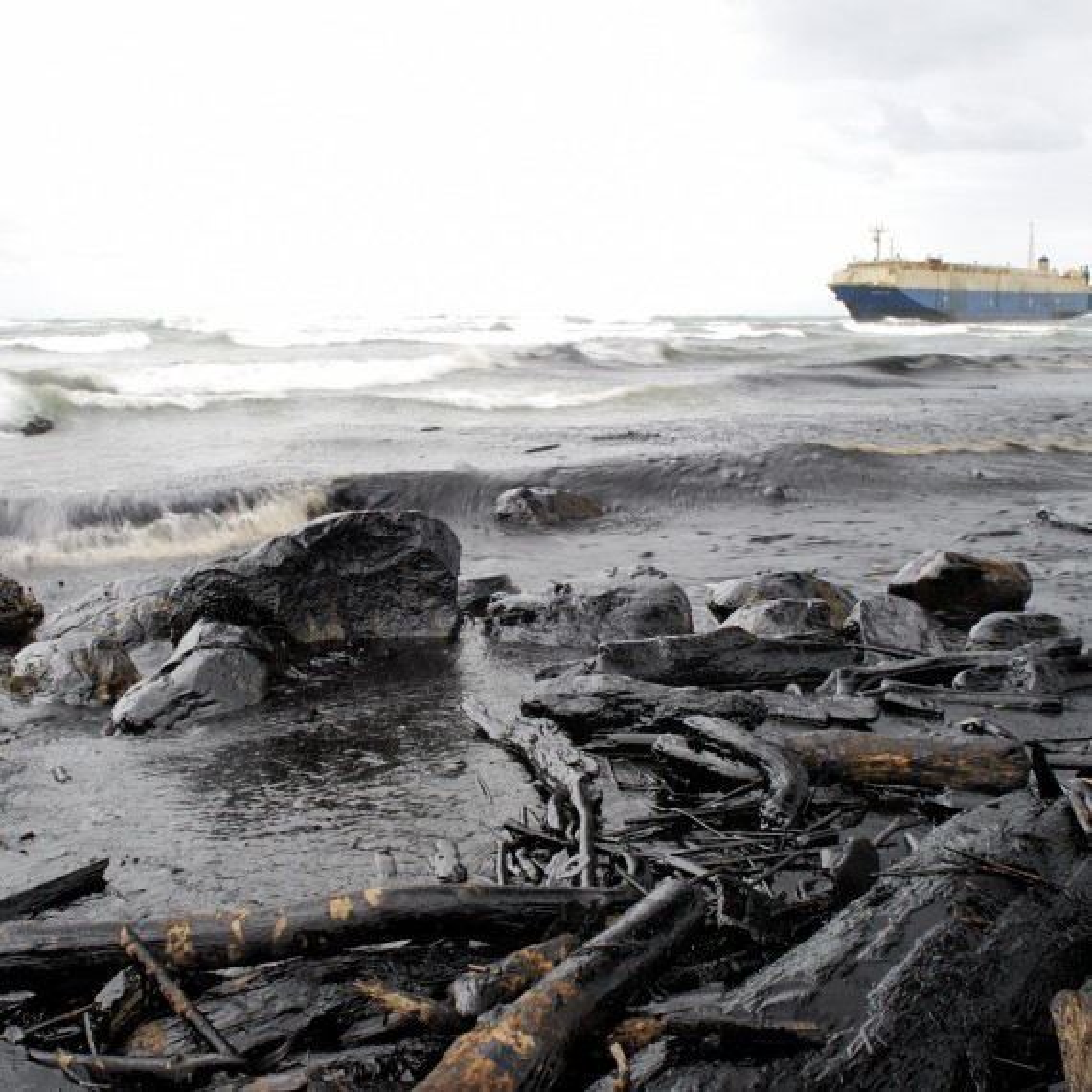 Derramamento de petróleo e seus impactos nos oceanos