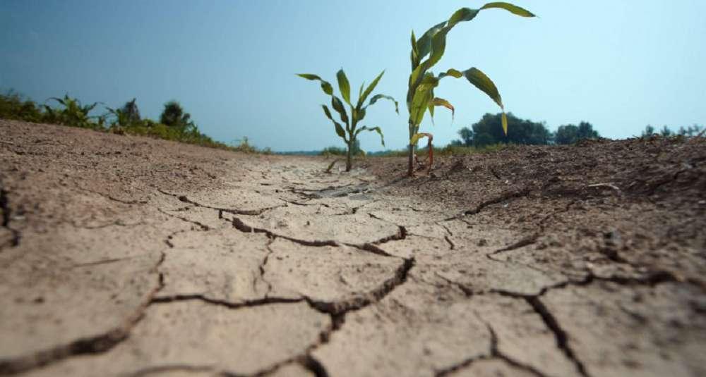 Como podemos evitar uma crise de escassez de água?