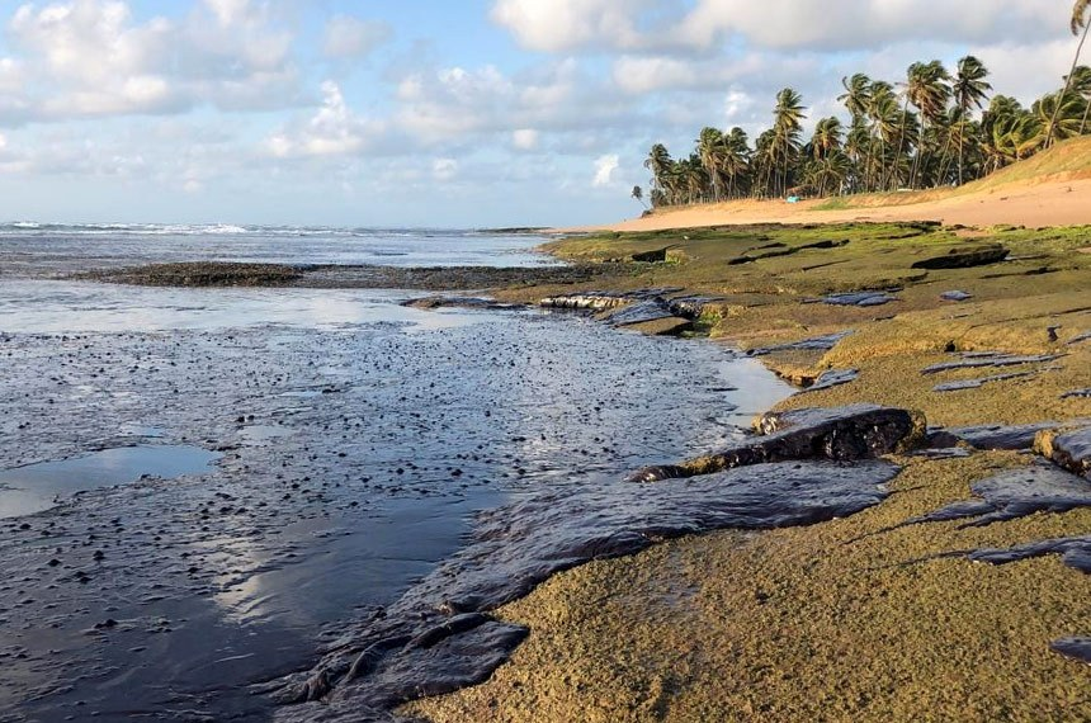 O óleo nas praias e os problemas que causa