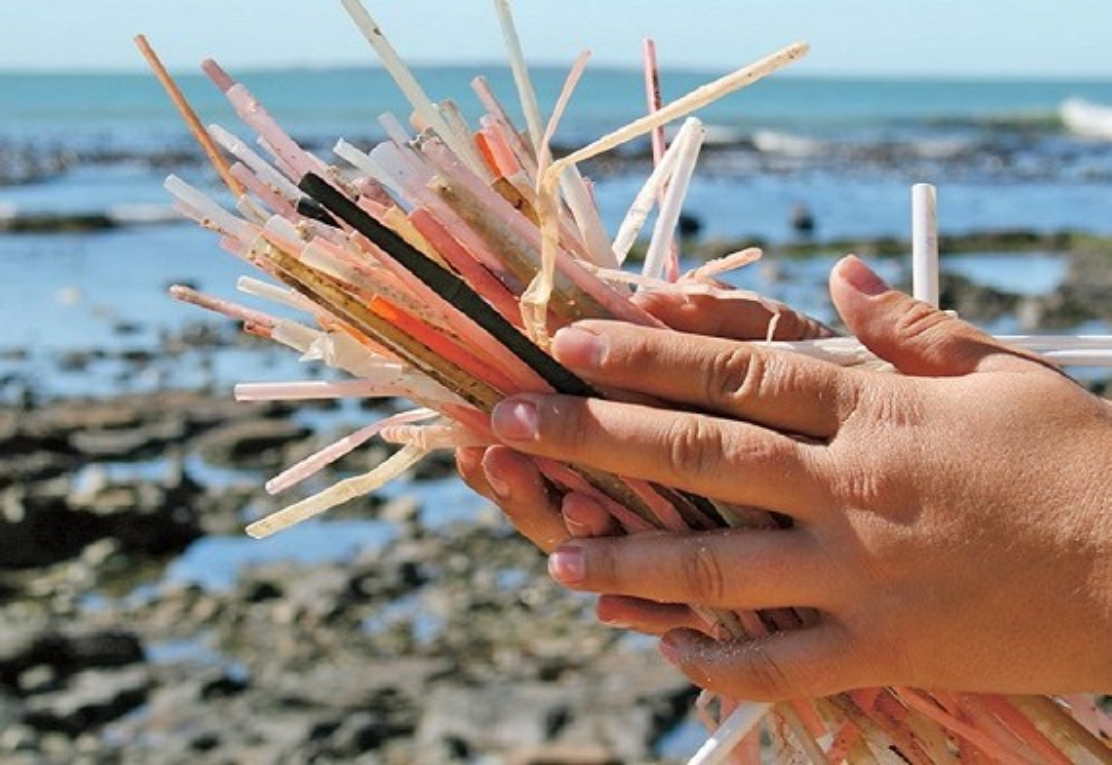 Canudos plásticos e seus impactos nos oceanos