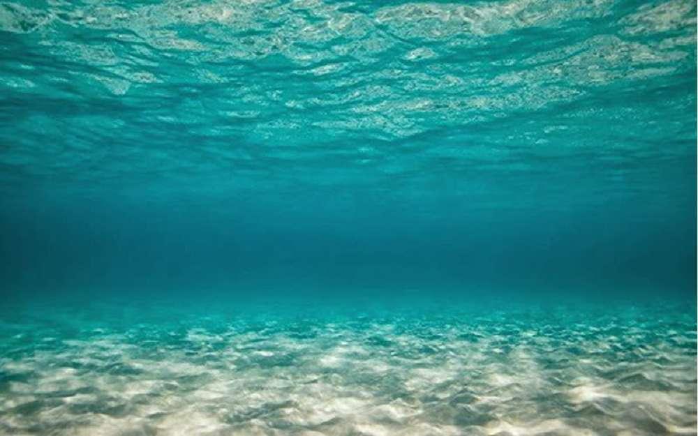 Pesquisadores estudam o silêncio dos oceanos causado pela pandemia