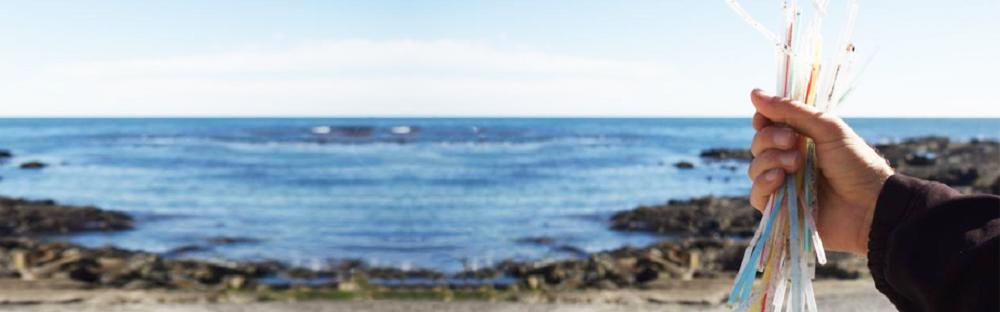 Por que os canudos são só a ponta do iceberg da poluição dos oceanos
