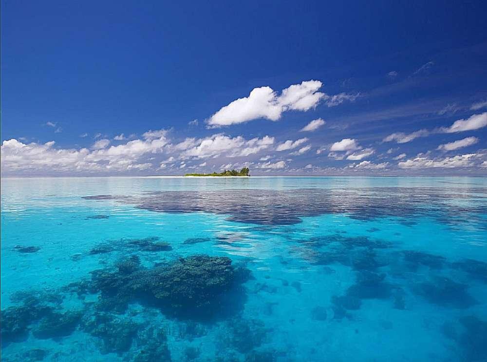 Entenda por que os oceanos do mundo podem absorver menos carbono no futuro