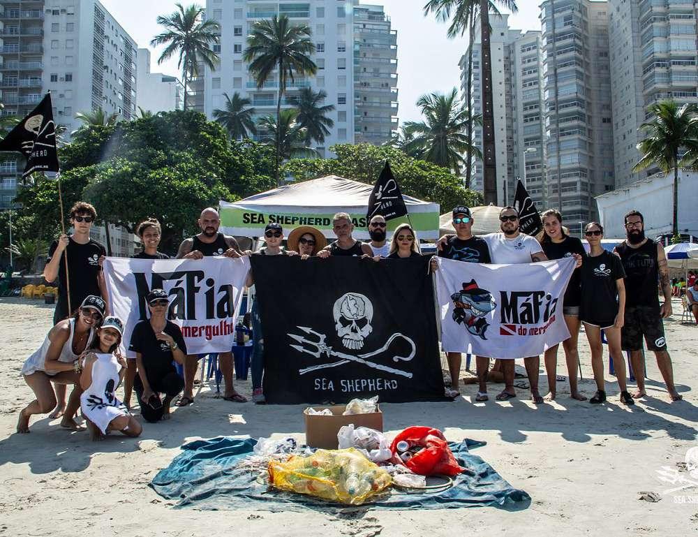Conheça algumas organizações que lutam pela preservação dos oceanos