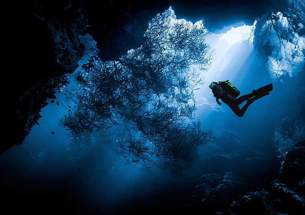 Os desafios para uma economia sustentável dos oceanos