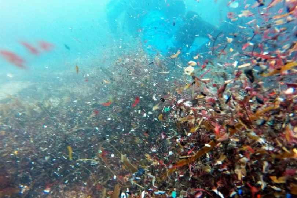 Para onde vão os microplásticos nos mares?