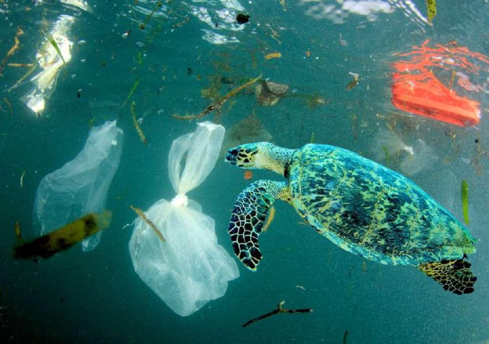 Como reduzir em 80% a poluição por plástico nos oceanos em 20 anos?