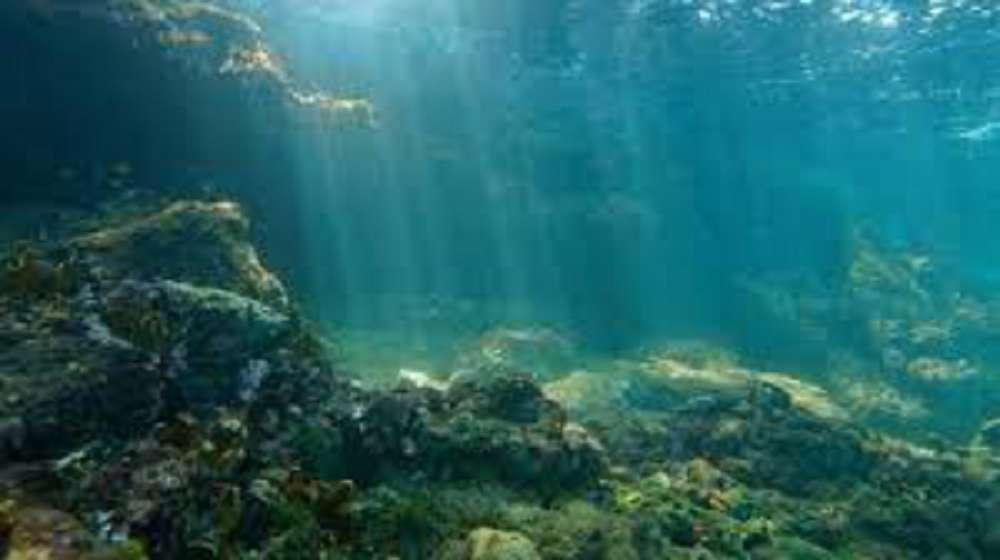 'Zona morta' no oceano preocupa cientistas