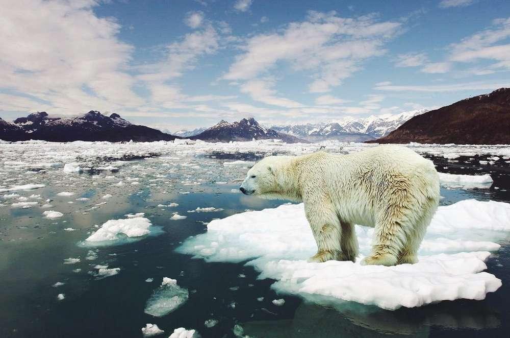 Guia definitivo para entender as mudanças climáticas